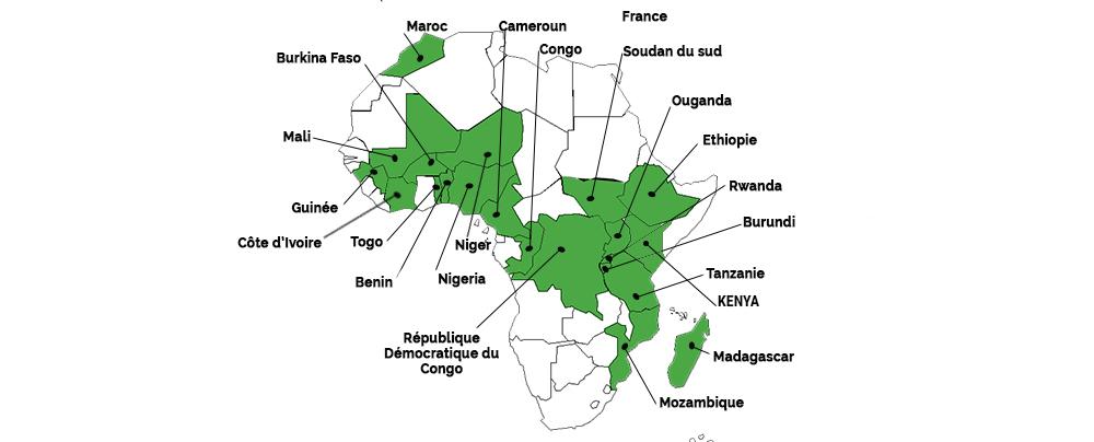Main-Network-fr